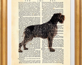 Wirehaired Pointing Griffon, beautiful dog Art Print on Upcycled Dictionary Book page 8'' x 10'' inches