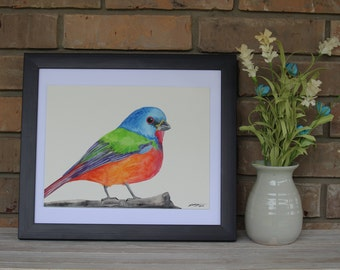 Original Hand Painted.... Painted Bunting Watercolor Painting (9x12)