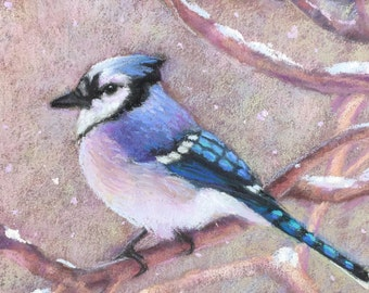 Blue Jay in Snow-Original Pastel Painting