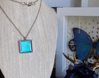 Real Blue Morpho Butterfly Necklace 24 inch chain