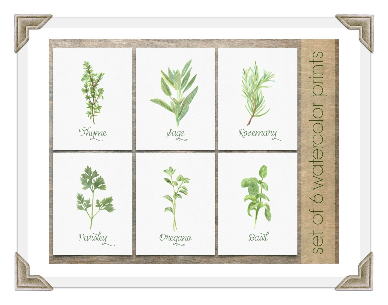 Https Www Etsy Com Uk Listing 271914602 Watercolor Herbs Set Of 6 Prints Kitchen