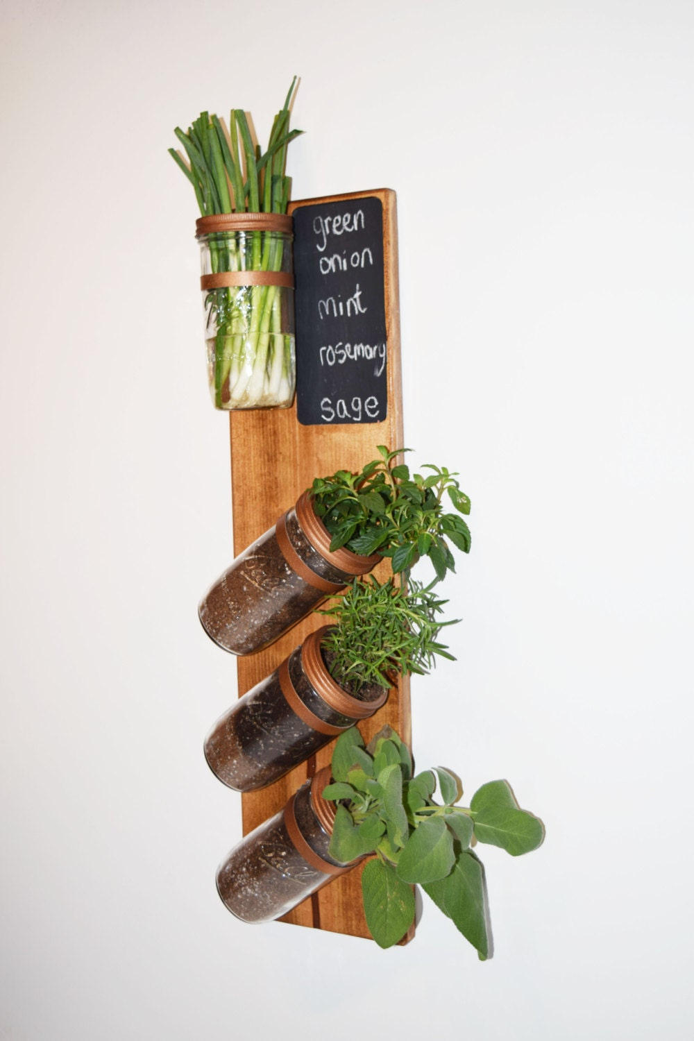 Free shipping vertical garden indoor herb garden by mintblooms Indoor living wall herb garden