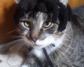 Cat Rasta Costume, knit hat for cat