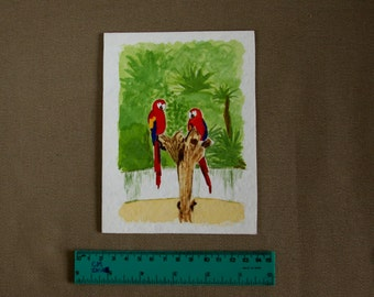 Parrots - Animal Watercolor Painting