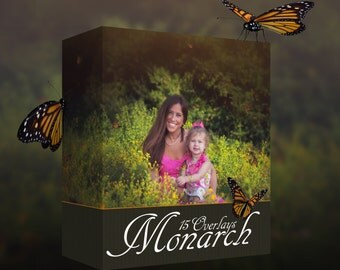 Butterfly Overlays, Monarch Overlays, Insect Overlays, PNG