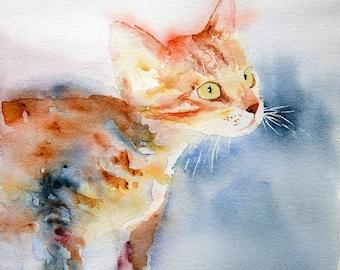 Cat watercolor,  Original painting, original watercolour, Watercolor, kitten watercolor, kitten