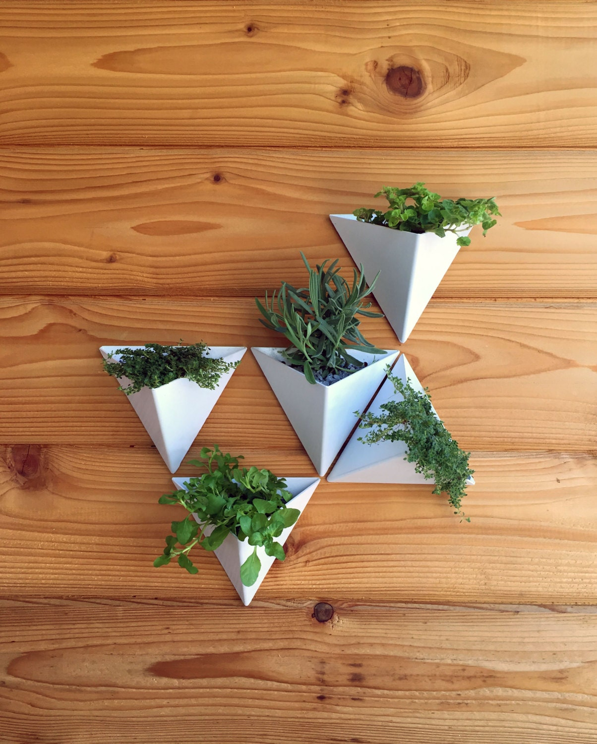 Modern Wall Planters: Color Tessellations // Set Of 5 // Modern Wall Planter