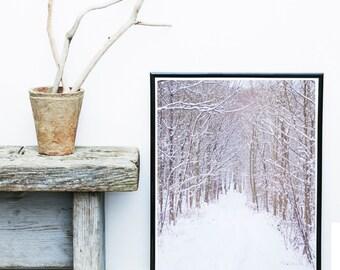 Winter Landscape, Minimalist Art, Scandinavian Print, Trees in Snow, Art Print,  Giclee print, Modern Wall Art, Large Print, Landscape Photo