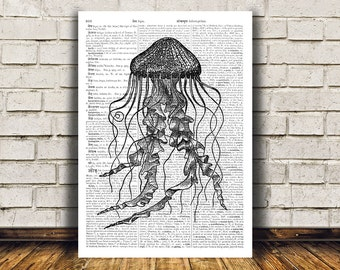 Nautical art Jellyfish poster Beach house decor Marine print RTA62