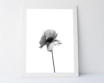 Black white wall art | Etsy