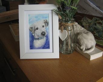 Pet Portraits - Original Artwork. Affordable, Mini-Portaits