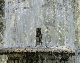 Photography on Canvas, Historic Fountain at Plantation