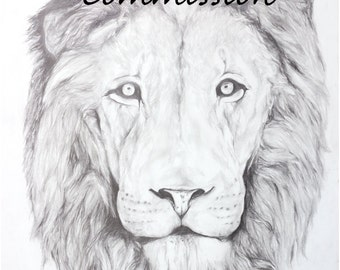Custom commission, pencil drawing of pet/animal portrait - various sizes