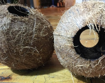 REAL ! Coconut Decoration for fish tanks.