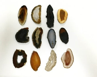 One Dozen Natural Brazilian Agate Slices - Brown, Black, Grey, Tan, Earth Tones - Twelve Agate Slices! Natural Mix!