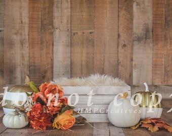 White Pumpkin Fall Newborn Digital Backdrop