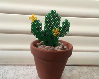 Perler Bead Saguaro Cactus in Pot