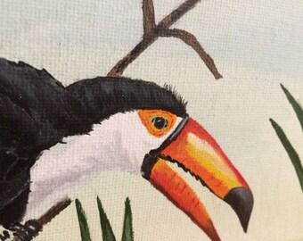 Original bird acrylic, tropical birds, toucan