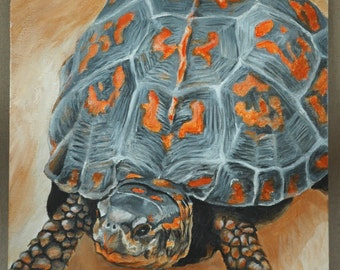 "Box Turtle Taking a Walk Original Acrylic Painting 11"" x 14"""
