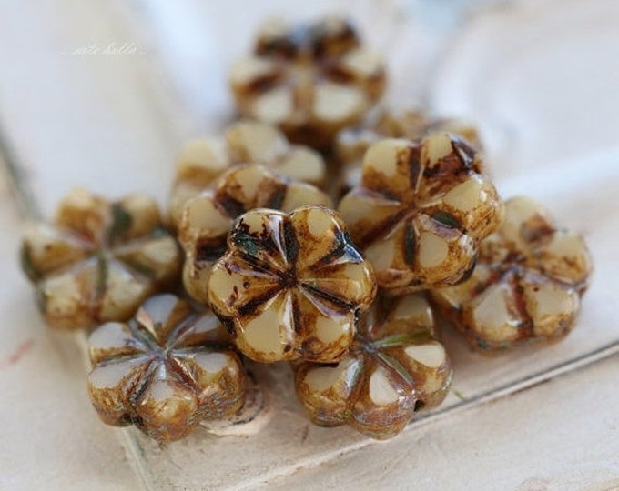 CREAM BLOOMS .. 10 Picasso Czech Flower Glass Beads 10x3mm (4851-10)