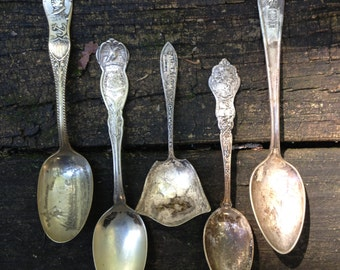 Instant Collection of Antique Spoons