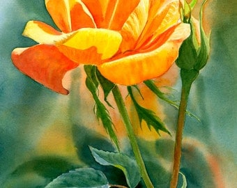 Yellow Orange Rose, watercolor painting, watercolor art, original painting, floral watercolor, orange rose 11 x 15.5