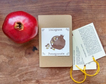 Moleskine cahier journal - Pomegranate - Original hand drawn illustration on cover