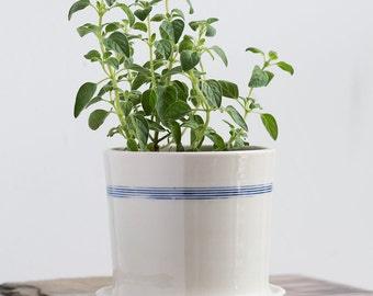 Extra Large Porcelain Planters with Drainage - Blue Stripes