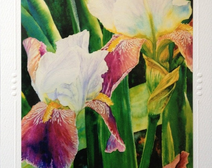SET OF 5 Iris Flower Art Greeting Note Card, Blank Beautiful Spring Bearded Flowers Watercolor painting Art print By Christie Marie Elder