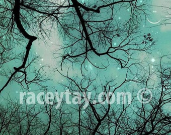 Teal Wall Decor- Smiling Moon & Stars- Trees Print - Nature Photography for Baby Neutral Nursery Decor