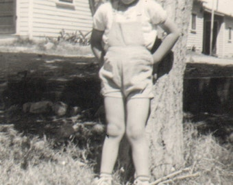 Vintage Photo of a Sweet Little Boy Leaning Against a Tree
