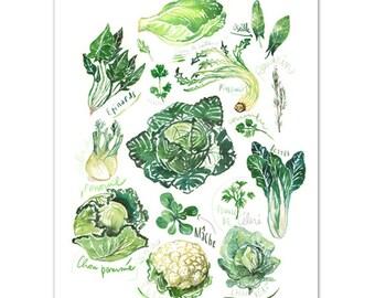 Greens, Vegetable print, Kitchen art, 8X10 print, Watercolor veggies, Food painting, Botanical artwork, Home decor, Green kitchen, Wall art