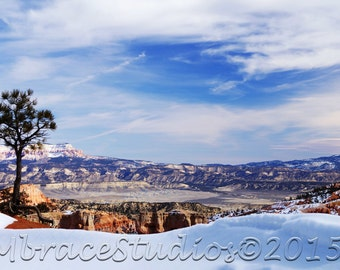 Bryce Canyon National Park Photography - Rainbow Point - Landscape Utah Photo in the Winter