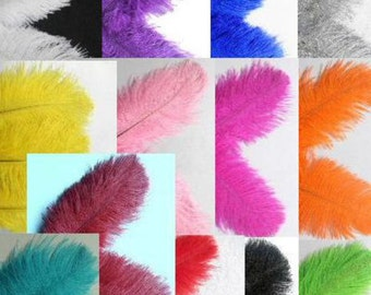 """10 Ostrich  6-8""""  MIX You Choose colors Feathers Drabs Plumes quills"""