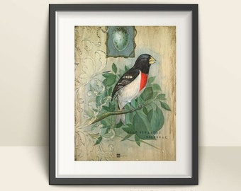 Vintage Bird Art Print, Ready to Frame Print, 8.5 x 11 print, Vintage Bird Prints, Prints to Frame,