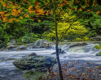 Rocky Broad River in October near Chimney Rock in North Carolina No.202 Fine Art Autumn Wilderness Mountain Stream Landscape Photography