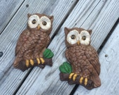 Owl Owls Pair Of Owls Plaques Wall Hangings