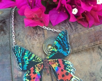 Sunset Moth Original Art Necklace Chrysiridia rhipheus