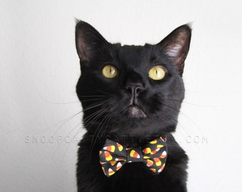 SALE!  Cat Bow Tie - Cuckoo for Candy Corn - Halloween Cat Accessory