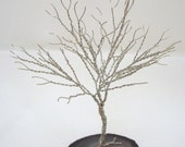 Silver Tree of Life, Tree Sculpture Party Favor, Mini Tree of Life, Wire Wrapped Tree Sculpture