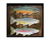 Brown, Brook, Rainbow trout 3-D folk art sculpture fish wood carvings in frame, lodge cabin decor, fly fishing gift, Handmade original art