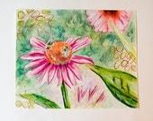 Original Illustration / Echinacea / Mixed Media Painting / Colourful Art / Floral Art