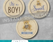 Vintage Teddy Bear Cupcake Toppers - Teddy Bear Party - It's a Boy - Baby Shower - Baby Boy - Tag - Digital - Printable - INSTANT DOWNLOAD
