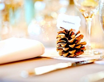 Rustic Wedding Escort Cards, Pine Cone Place Card Favors to Decorate your Wedding Table, Eco Friendly Nature Inspired
