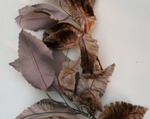 Large Brown Vintage Leaves // Craft Supplies // 11 Leaf Spray for Hat Making // True Vintage Millinery Trims