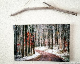 Metal Print, Winter Road, First Snow, Nature Photography, Driftwood, White Brown, Winter Forest, A Road Less Traveled, Wisconsin, Home Decor