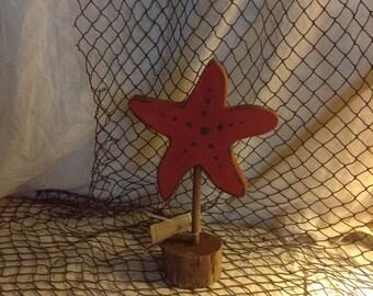 Starfish Shelf Sitter
