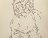 Custom Pet Portrait/ Blind Contour / Emily Haworth
