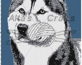 Siberian Husky blanket pattern