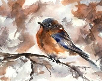 Robin Bird Painting, Original  Watercolor Painting, Bird Watercolour Art